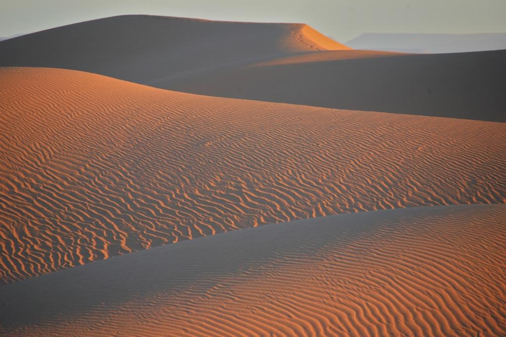 Сахара. Живая параллель 2012