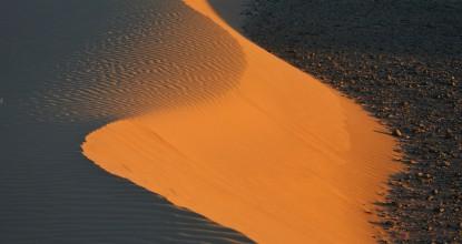 Краски пустыни